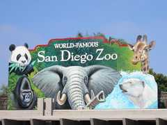San Diego Zoo - Attraction - 2920 Zoo Dr, San Diego, CA, USA