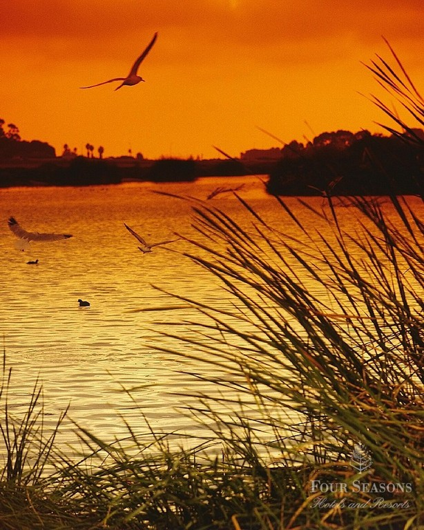 Batiquitos Lagoon & Walking Trail - Parks/Recreation - Batiquitos Dr, Carlsbad, CA, 92011, US