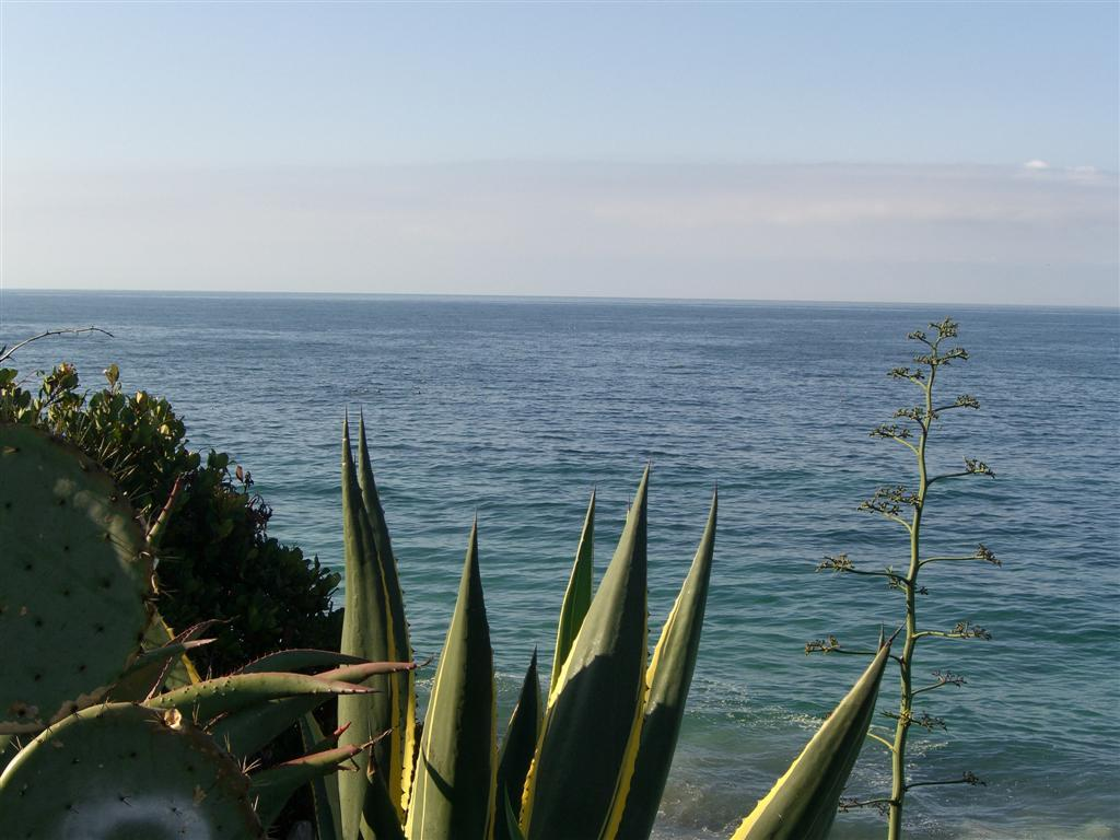 Laguna Beach - Shopping, Attractions/Entertainment, Beaches - Laguna Beach, CA, Laguna Beach, California, US