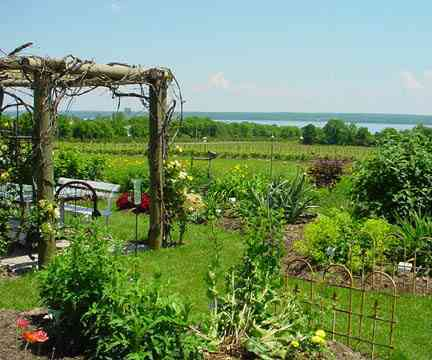 Anthony Road Wine Co - Wineries, Attractions/Entertainment - 1225 Anthony Rd, Penn Yan, NY, United States