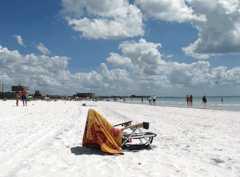 Siesta Key Beach - Beach - 948 Beach Rd, Sarasota, FL, 34242, US
