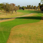 Rocky Point Golf Course - Hotels/Accommodations, Attractions/Entertainment - 4151 Dana Shores Dr, Tampa, FL, United States
