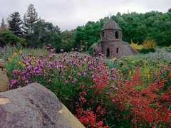 Santa Barbara Botanic Garden - Attractions - 1212 Mission Canyon Rd, Santa Barbara, CA, 93105, US