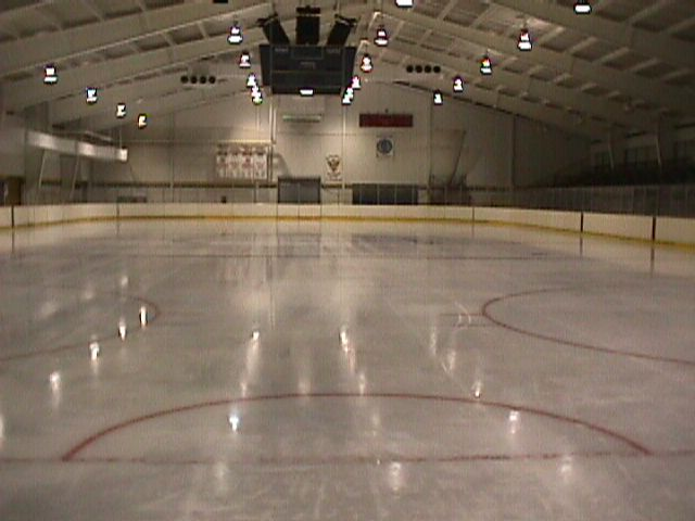 Brady's Run Park Ice Arena http://www.weddingmapper.com/wedding_vendors/pa/economy/attractions_entertainment/30