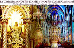 Notre Dame Cathedral - Ceremony - 56 Guigues Ave, Ottawa Division, ON, K1N 5H8