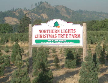 Northern Lights Christmas Tree Farm | Wedding Venues & Vendors ...
