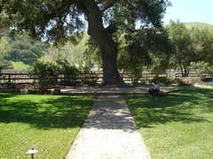 Tres Hermanas Vineyard & Winery - Ceremony / Reception - 9660 Foxen Canyon Rd, Santa Maria, CA, 93454, US