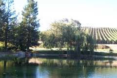 Bridlewood Winery - Wineries - 3555 Roblar Ave, Santa Ynez, CA, United States