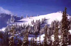 Hurricane Ridge - Attraction - Hurricane Ridge, US