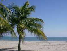 Crandon Park - Beach -