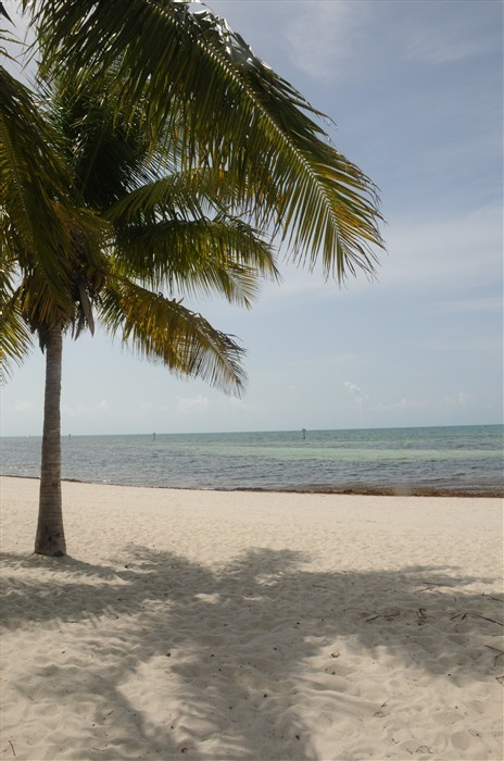 Smathers Beach - Ceremony Sites, Attractions/Entertainment, Beaches - 2001 S Roosevelt Blvd, Key West, FL, United States