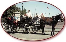 Classic Carriage Tours - Attraction - 10 Guignard St, Charleston, SC, United States