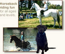 Bar-B-Ranch Horseback Riding - Sports Event - 3500 SW 121st Ave, Davie, FL, United States