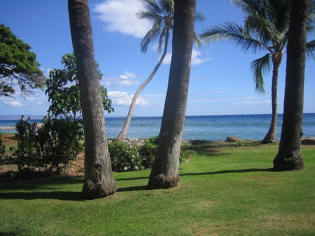 Olowalu Plantation House - Ceremony Sites, Attractions/Entertainment, Ceremony & Reception - 810 Olowalu Village Rd, Lahaina, HI, 96761