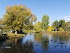 City Park - Activities - City Park, Fort Collins, CO 80521, Fort Collins, CO, US