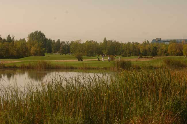 Pineview Golf - Golf Courses - 1741 Blair Road, Gloucester, Ontario, K1R 4S3