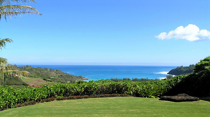 Hawaiian Romantic Cottage - Ceremony Sites - 4090 Pali Moana Pl, Kilauea, HI, 96754, United States