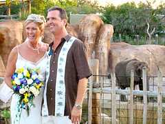 Lowery Park Zoo - Ceremony - 1101 W Sligh Ave, Tampa, FL, 33604, US