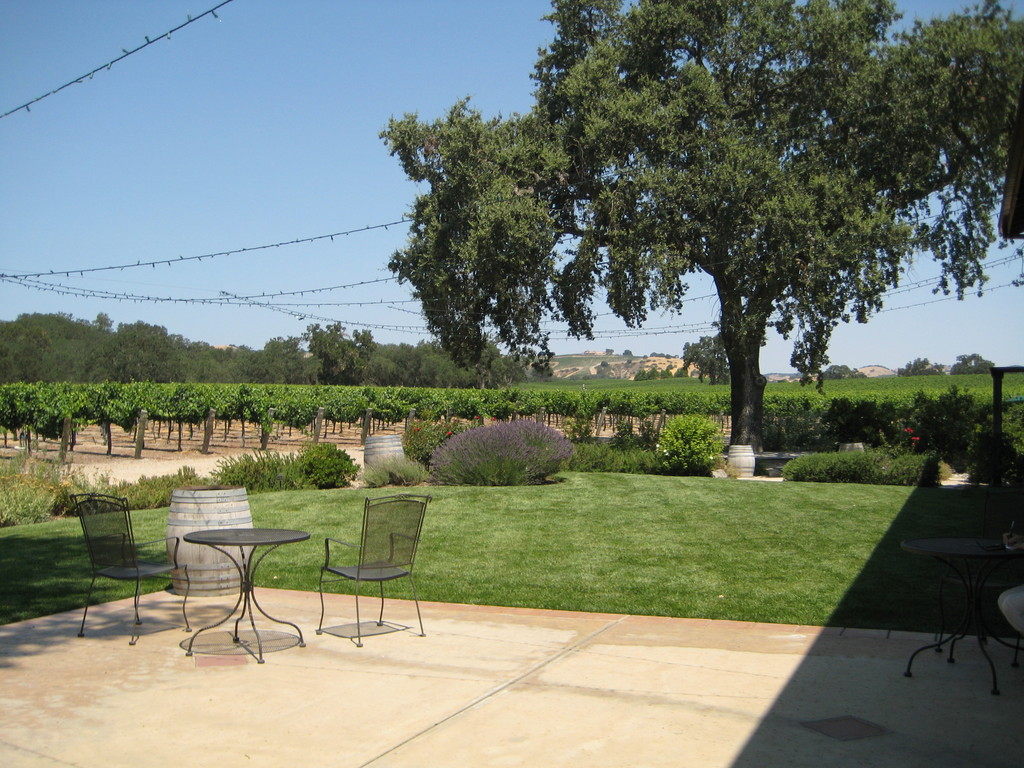 Zenaida Cellars - Ceremony Sites, Reception Sites, Wineries, Attractions/Entertainment - 1550 W Highway 46, Paso Robles, CA, United States