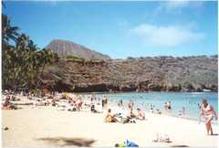 Hanauma Bay Snorkeling Excursions & Shuttle - Attraction - Honolulu, HI, United States
