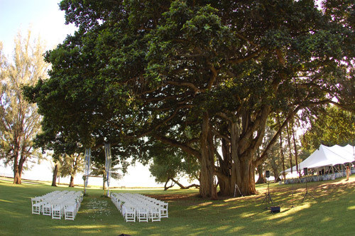 Waimea Plantation Cottages - Ceremony Sites, Reception Sites, Ceremony & Reception - 9400 Kaumualii Highway, Waimea, Hi, 96796, United States