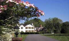 Mount Airy Mansion - Reception - 8714 Rosaryville Rd, Upper Marlboro, MD, 20772