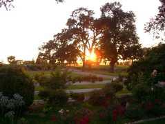 Oak Farm Vineyards - Reception - 23627 N Devries Rd, Lodi, CA, 95242