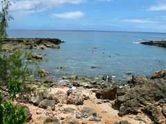 Shark's Cove - Attraction - 59-712 Kamehameha Hwy, Haleiwa, HI, United States