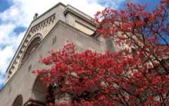 Holy Trinity Church - Ceremony - 34 Maple Ave, Hackensack, NJ, 07601, USA