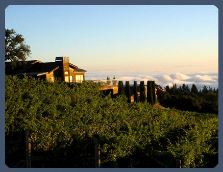 Wedding Reception Location - Ceremony Sites, Reception Sites - 19501 Skyline Blvd, Woodside, CA, 94028