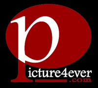 Picture4ever studio - Photographers, Videographers - 291  victoria ln, elk grove village, IL, 60007, usa