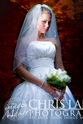 Chris Lang Photography - Photographers, Videographers - 8209 Market St Ste A , Box191 , WIlmington , NC, 28404, US