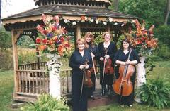 Angelicus String Quartet - Bands/Live Entertainment, Ceremony Musicians - 38 Leander Rd., Rochester, NY, 14612, US
