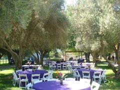Shoestring Winery - Attractions/Entertainment, Wineries, Reception Sites - 800 East Hwy. 246, Solvang, CA, 93463, USA