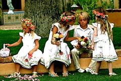 Sugar Magnolia - Florists, Rentals - 15425 N Scottsdale Rd , #210, Scottsdale , AZ, 85255, us