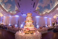 European Crystal Banquets  - Ceremony & Reception, Reception Sites - 519 W Algonquin Rd , Arlington Heights , Illinois, 60005, USA