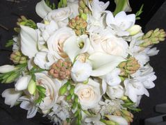 Fat Cat Flowers - Florist - 719 N. Murat St., New Orleans , LA, 70119, usa