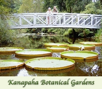 Kanapaha Botanical Gardens - Attractions/Entertainment, Ceremony Sites, Reception Sites, Rentals - 4700 SW 58th Dr, Gainesville, FL, 32608, United States