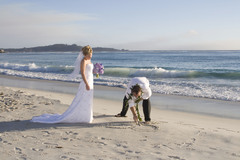 Chrysalis Photography - Photographers - 66 Punta Perdido, Monterey, CA, 93940, United States
