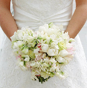 Kim Fisher Designs  - Florists, Coordinators/Planners - 5806 Camellia Lane , Wilmington , NC, 28409, US