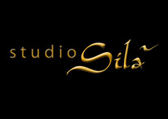 Studio Sila - Wedding Day Beauty, Photographers - 1121 Waimea Bend, (By appointment only), Round Rock, TX, 78681, USA