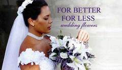 For Better For Less Wedding Flowers - Florists - 9220 Yellow Lake Drive, New Port Richey, Florida, 34654, USA