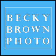 Becky Brown Photography - Photographers - 8118 Whitview Drive, Indianapolis, IN, 46237