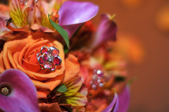 Royal Design Flowers & Events - Florists, Decorations - Serving the Greater Philadelphia area, Philadelphia, Pa, 19131, USA