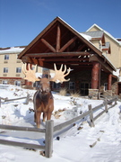 Stoney Creek Inn - Hotels/Accommodations, Reception Sites - 1201 N Woodbine Road, Saint Joseph, MO, 64506, USA