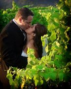 A Dream Wedding - Coordinators/Planners - 2132 San Antonio Drive, Santa Rosa, CA, 95405, USA