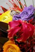 The FireFly Florist - Florists - 3396 consaul RD. , Niskayuna , NY, 12304, USA