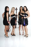 Palatine String Quartet - Ceremony Musicians, Bands/Live Entertainment - Harefield, Middlesex