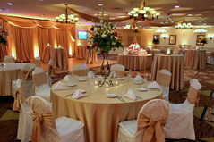 Holiday Inn Cherry Hill - Ceremony & Reception, Hotels/Accommodations - 2175 Marlton Pike West, Cherry Hill, NJ, 08002