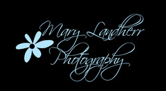 Mary Landherr Photography - Photographers - 1803 2nd Ave SE, Austin, Minnesota, 55912, United States